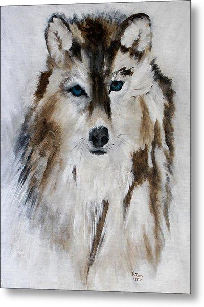 Wolf - Blue Star Metal Print