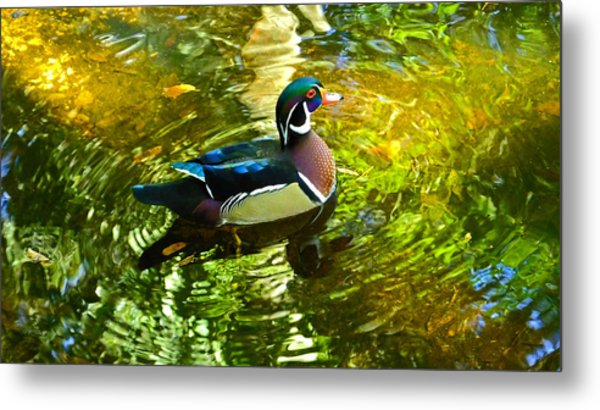 Wood Duck In Lights Metal Print