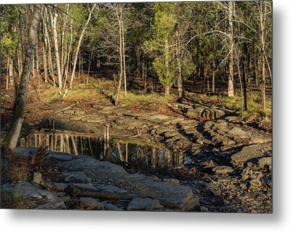 Wooded Backwash Metal Print