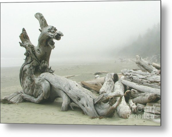 Wooden Dragon Metal Print