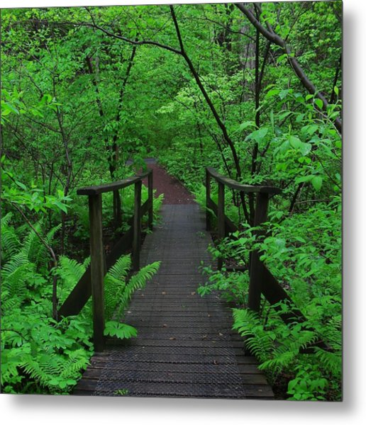 Wooden Foot Bridge Metal Print