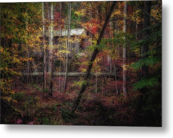 Woodland Bridge Metal Print