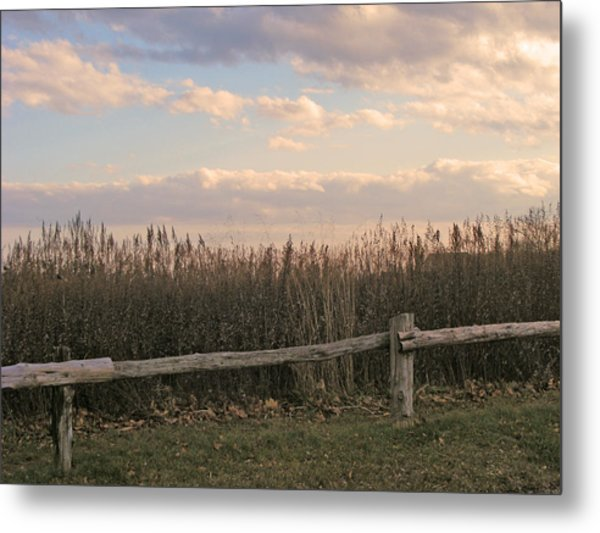 Woodland Fences - Marshes Of Fairfield County Ct Metal Print