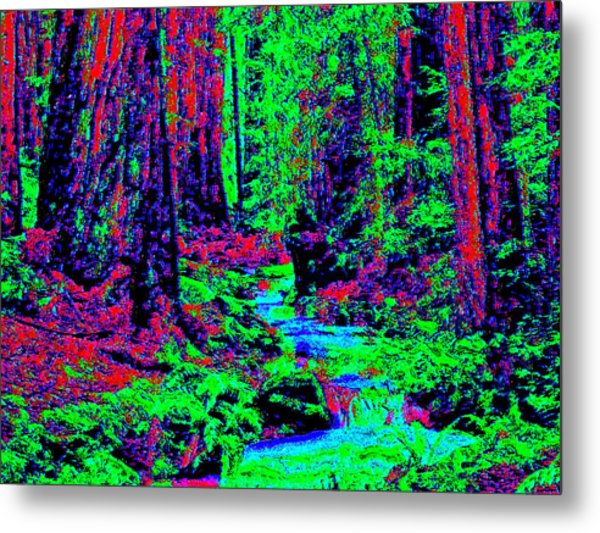 Woodland Forest D3 Metal Print by Modified Image