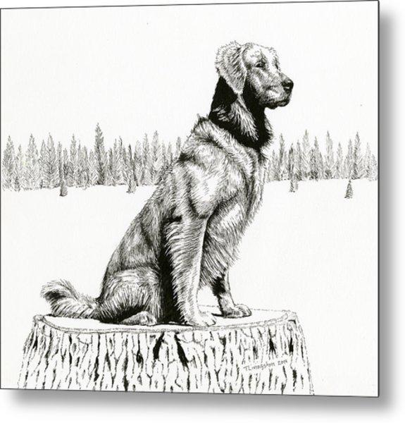 Woods Dog Metal Print