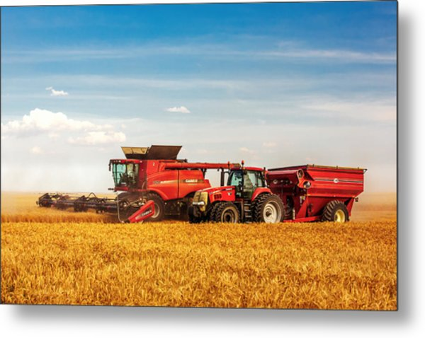 Working Side-by-side Metal Print