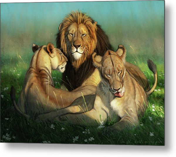 World Lion Day Metal Print