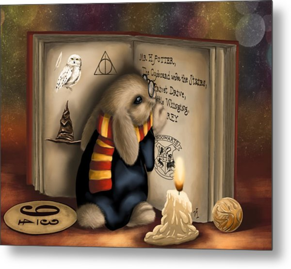 Wow I'm Harry Potter Metal Print