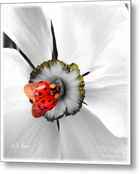 Wow Ladybug Is Hot Today Metal Print