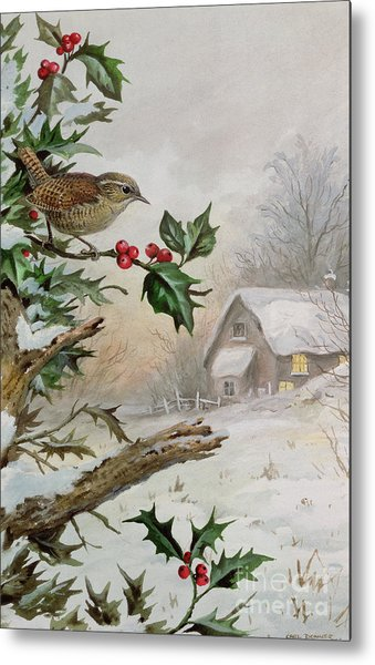 Wren In Hollybush By A Cottage Metal Print