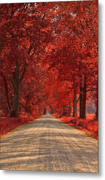Wye Island Ruby Road Metal Print