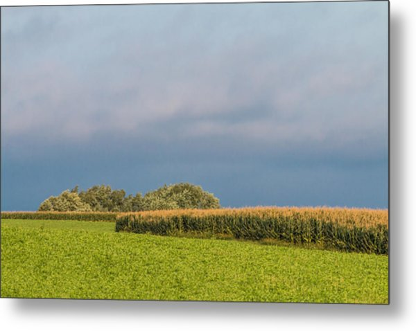 Farmer's Field Metal Print