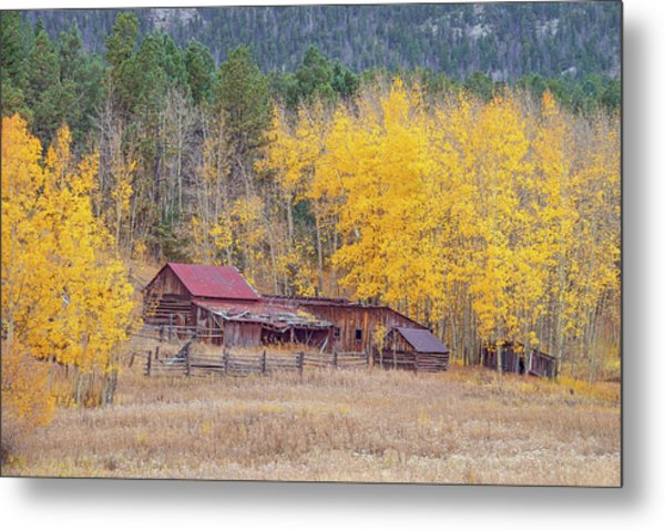 Yearning For The Tranquility Of A Rustic Milieu  Metal Print