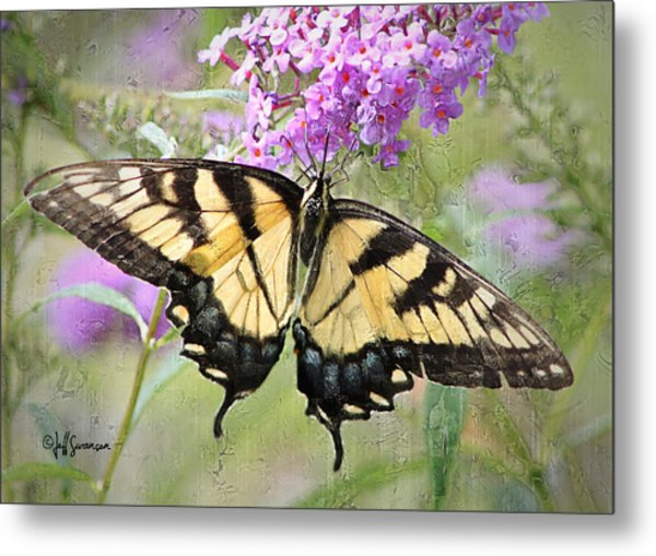 Yellow And Black Beauty Metal Print