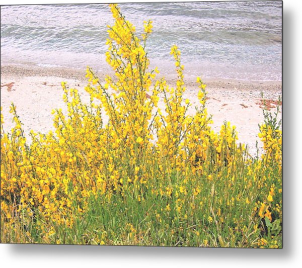 Yellow Brush Metal Print