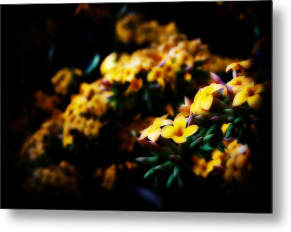 Yellow Metal Print by Cabral Stock