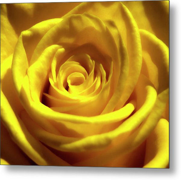 Yellow Dream 2 Metal Print
