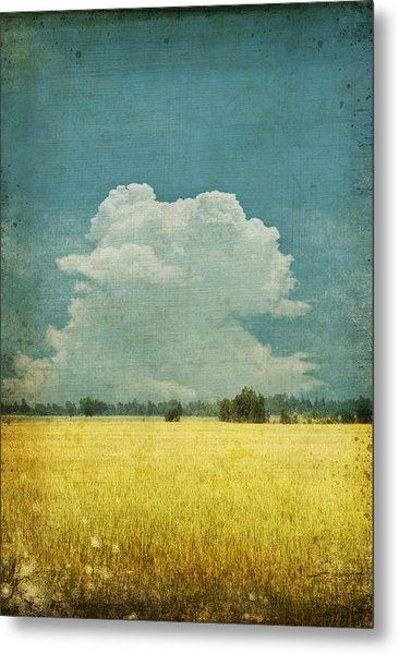 Yellow Field On Old Grunge Paper Metal Print
