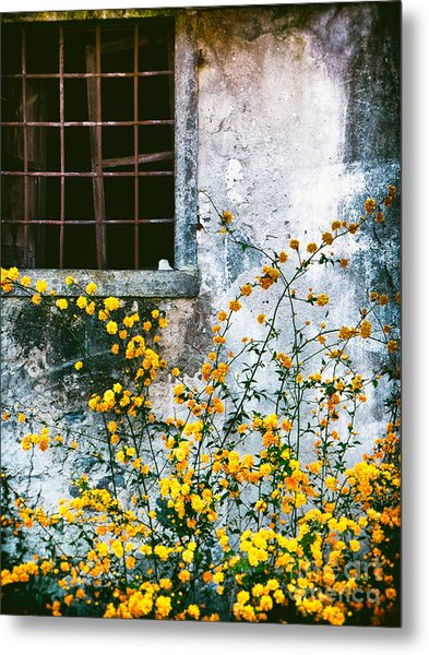 Yellow Flowers And Window Metal Print