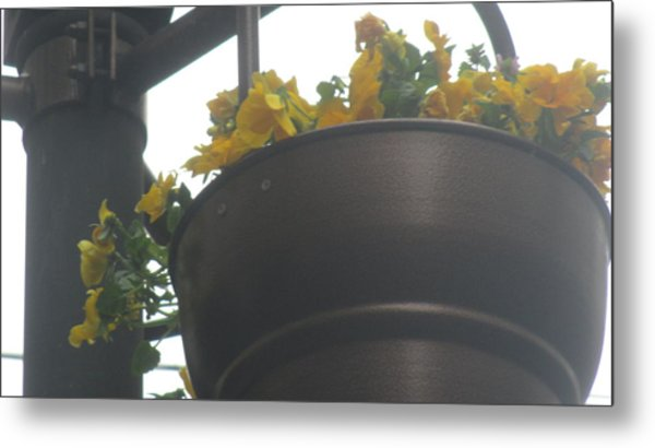 Yellow Flowers Hanging Metal Print
