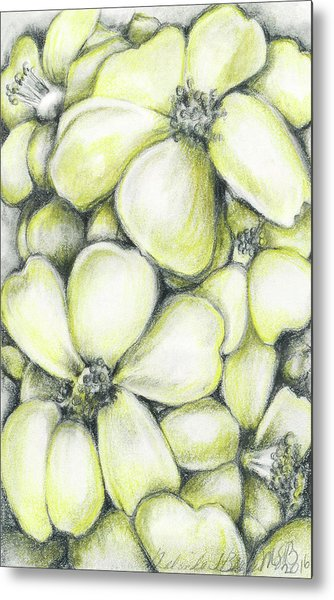 Yellow Flowers Pencil Metal Print