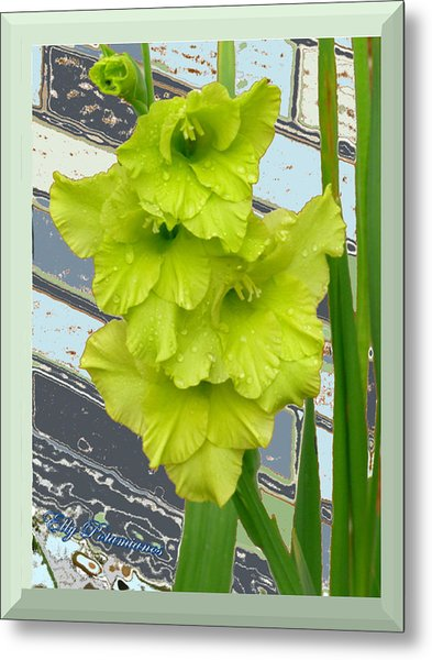 Yellow Gladiolas Metal Print