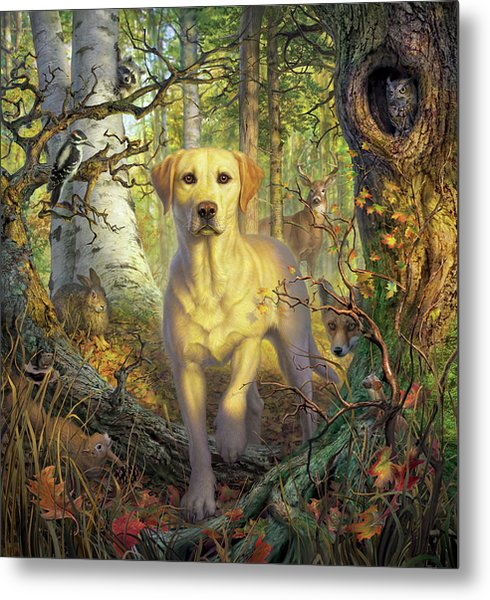 Yellow Lab In Fall Metal Print