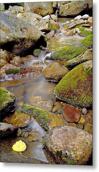 Yellow Leaf Stair Falls Photo Metal Print