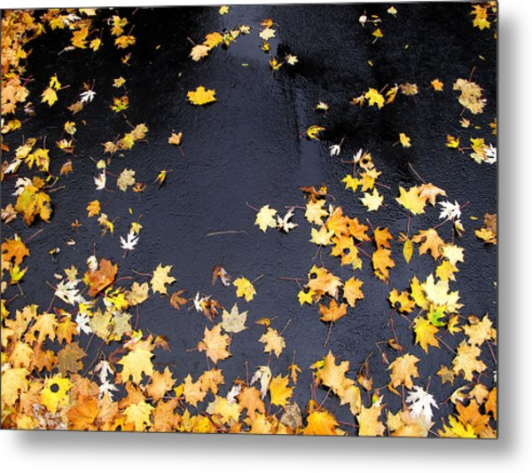 Yellow Maple Leaves On Pavement  Metal Print by Lyle Crump