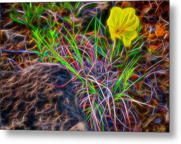 Yellow Primrose Electrify Metal Print