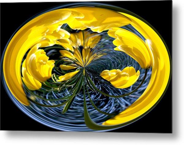 Yellow Tulip Metal Print by Robert  McCord