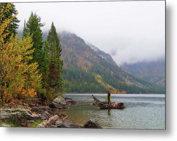 Metal Print featuring the photograph Yellowstone Lake Fall by Broderick Delaney