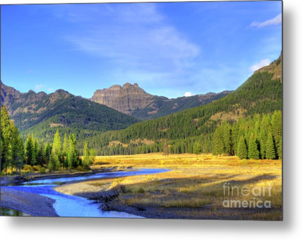 Yellowstone National Park Landscape Metal Print