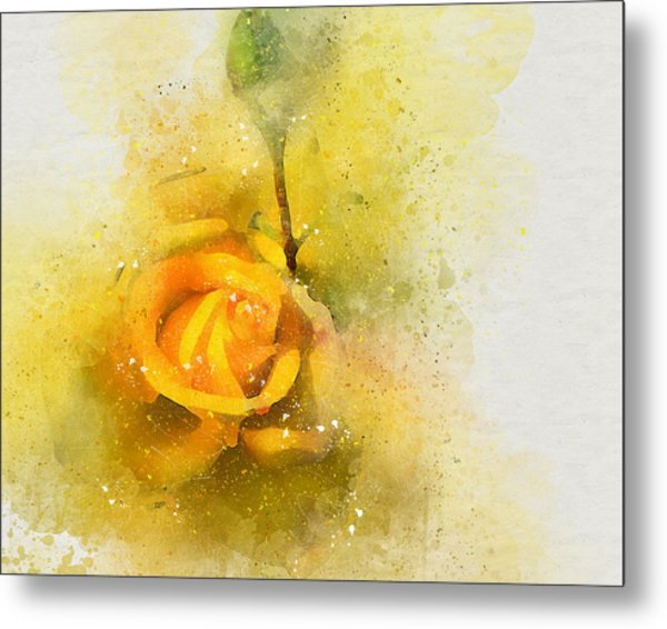 Yelow Rose Metal Print
