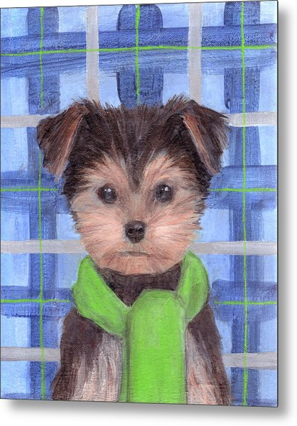 Yorkie Poo With Scarf Metal Print