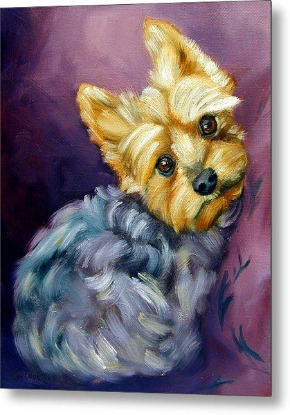 Yorkshire Terrier Yorkie Snuggles Metal Print