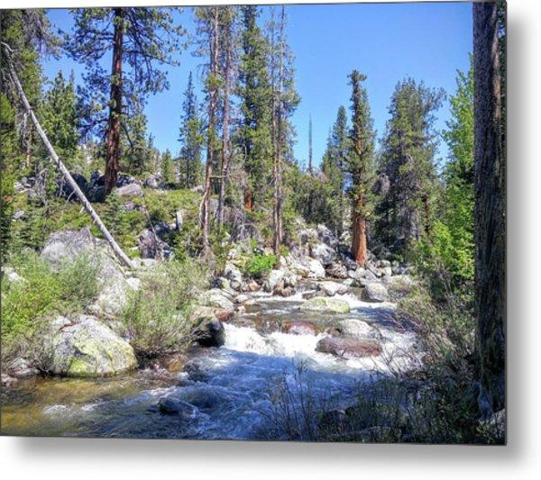 Yosemite Rough Ride Metal Print