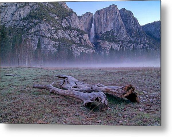Yosemite Falls Driftwood Metal Print