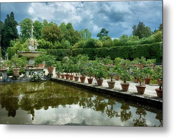 You Have Quite A Garden There Metal Print