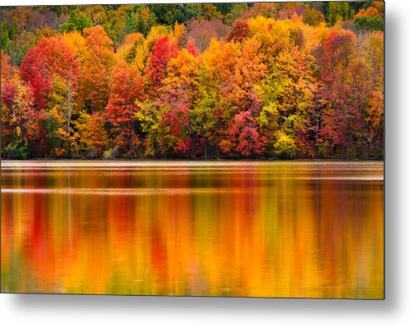 Yummy Autumn Colors Metal Print