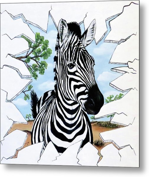 Zany Zebra Metal Print