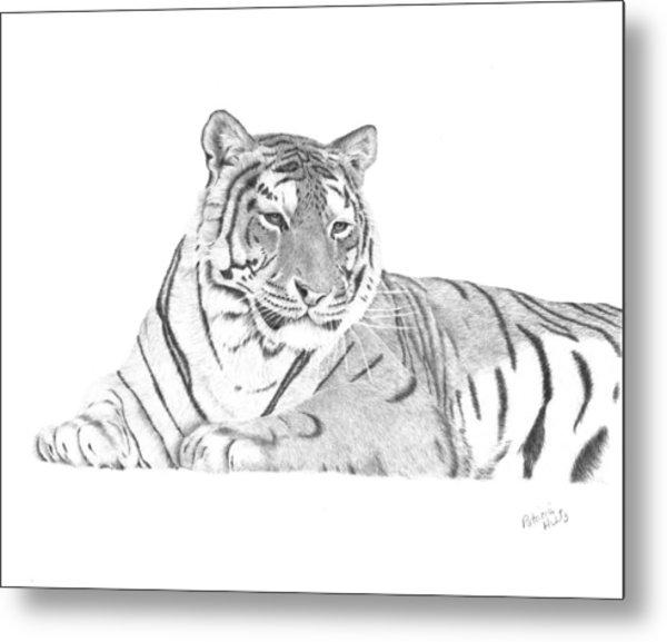 Zarina A Siberian Tiger Metal Print