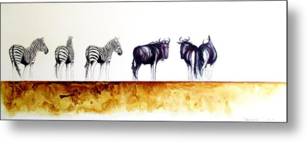 Zebra And Wildebeest Metal Print