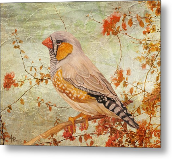 Zebra Finch Among Almond Trees Metal Print
