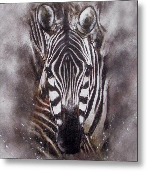 Zebra Splash Metal Print