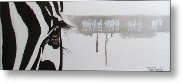 Zebra Tears Metal Print