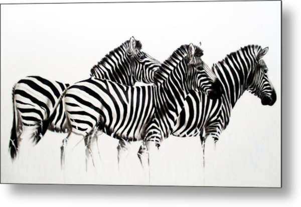 Zebras - Black And White Metal Print