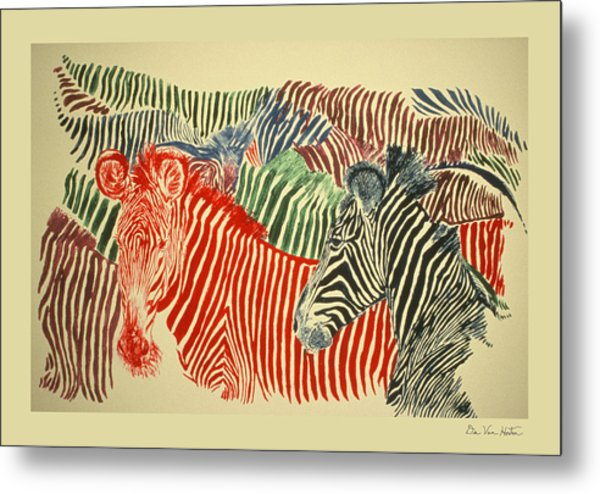 Zebras Of A Different Color Metal Print