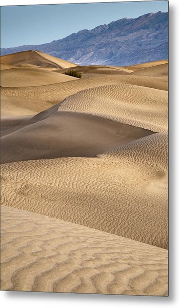 Zig Zag Metal Print by Mike McMurray