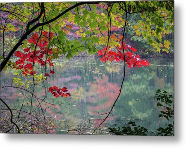 Autumn At Spirit Springs Metal Print